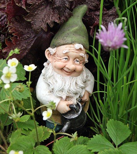 17 Best 1000 images about Garden Gnomes on Pinterest Garden gnomes