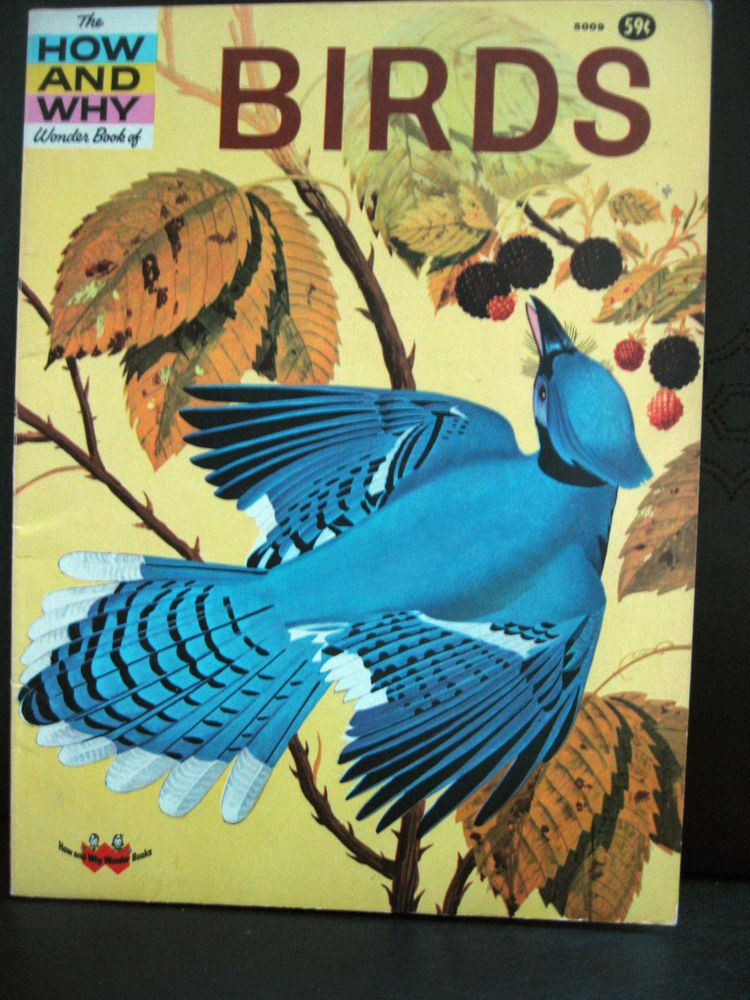 The How and Why Wonder Book of Birds