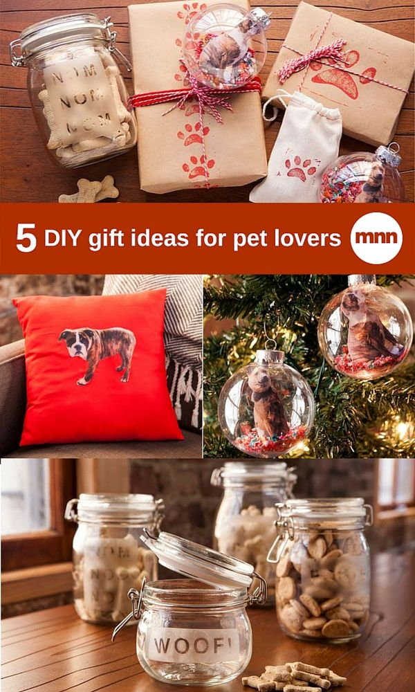 5 Diy Gift Ideas For Dog Lovers Pets Christmas Gift