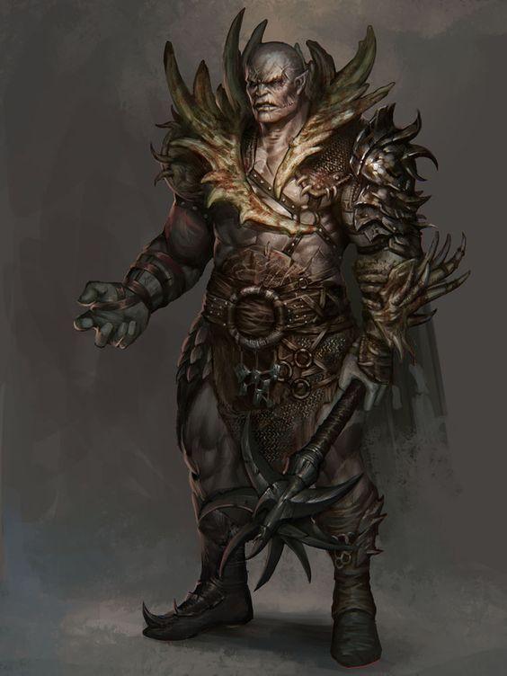 Torchlight  Druid Build