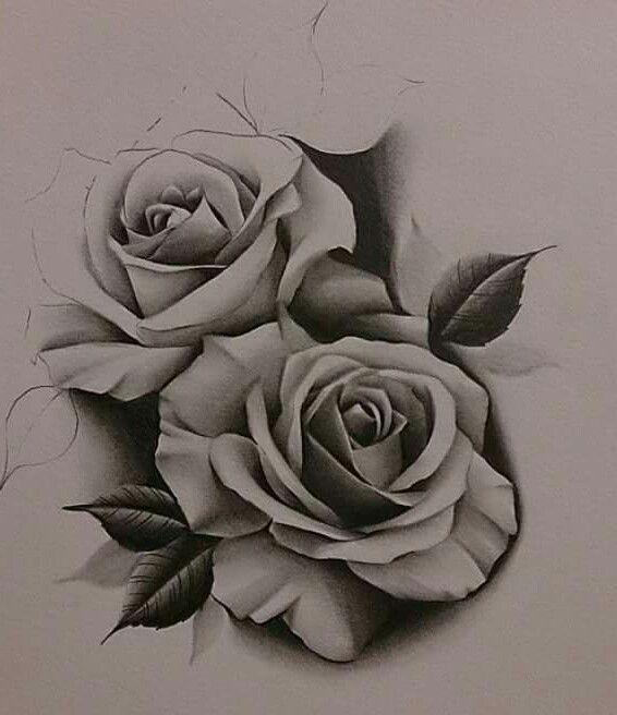 Pin By Dario On Screenshots Rose Drawing Tattoo Rose Tattoos Tattoos