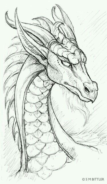How To Draw A Dragon Step By Step With Pencil Free Download Oasis