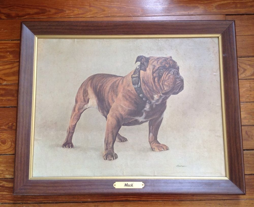 Csatari Mack Truck Bulldog Painting Sign Print Allentown Pa Vintage Bulldog Print Mack Trucks Bulldog