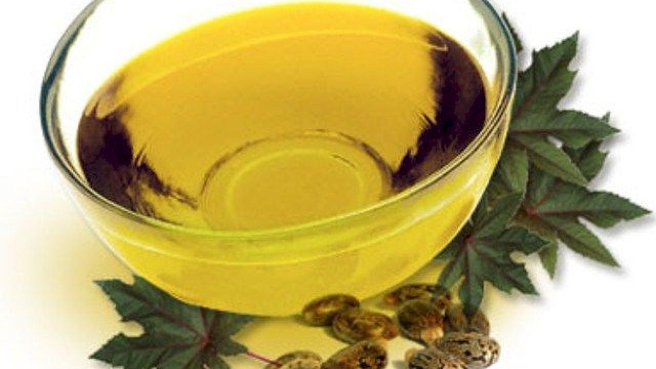 فوائد زيت الخروع للحامل Castor Oil Benefits Castor Oil Oils