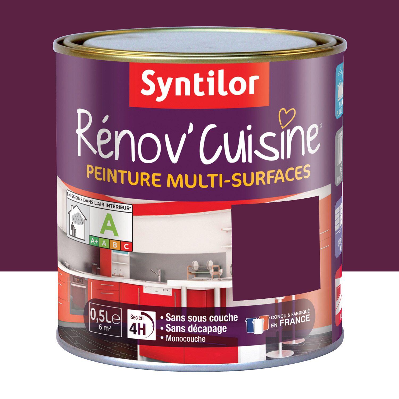 Peinture De Renovation Renov Cuisine Syntilor Aubergine 0 5 L Peinture Plan De Travail Peindre Plan De Travail Quelle Peinture Choisir