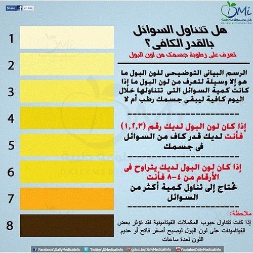 لون البول Healthy Body Body Healthy Living