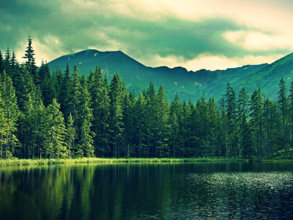 Mountain Green Forest Deep Sea Hd Desktop Wallpaper Lake