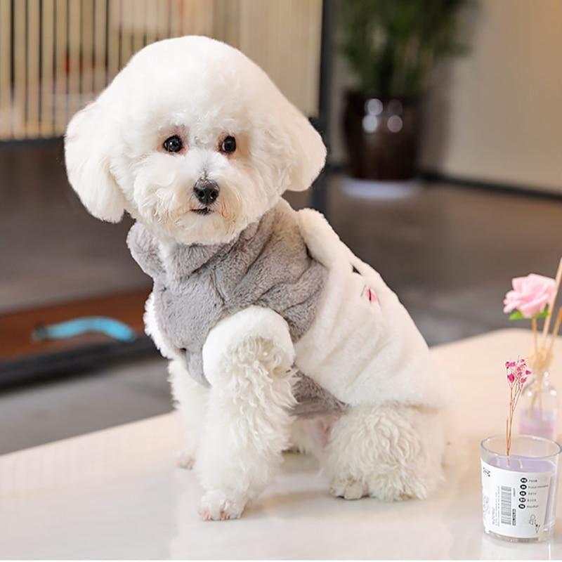 Cute Pet Dog Clothes Cc0017 Cute Animals Pet Dogs Pets