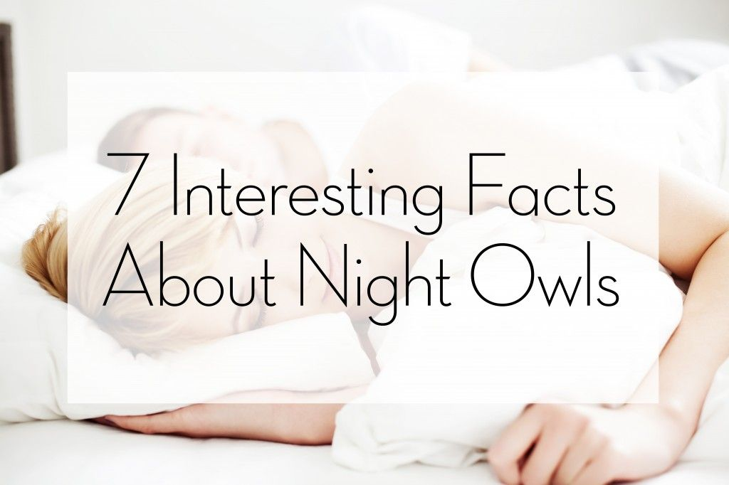 7 Interesting Facts About Night Owls - Tipsy