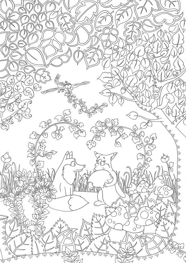 Coloriage Foret Renard.Jeux Coloriage A Imprimer Foret Renard Lisa Illustration