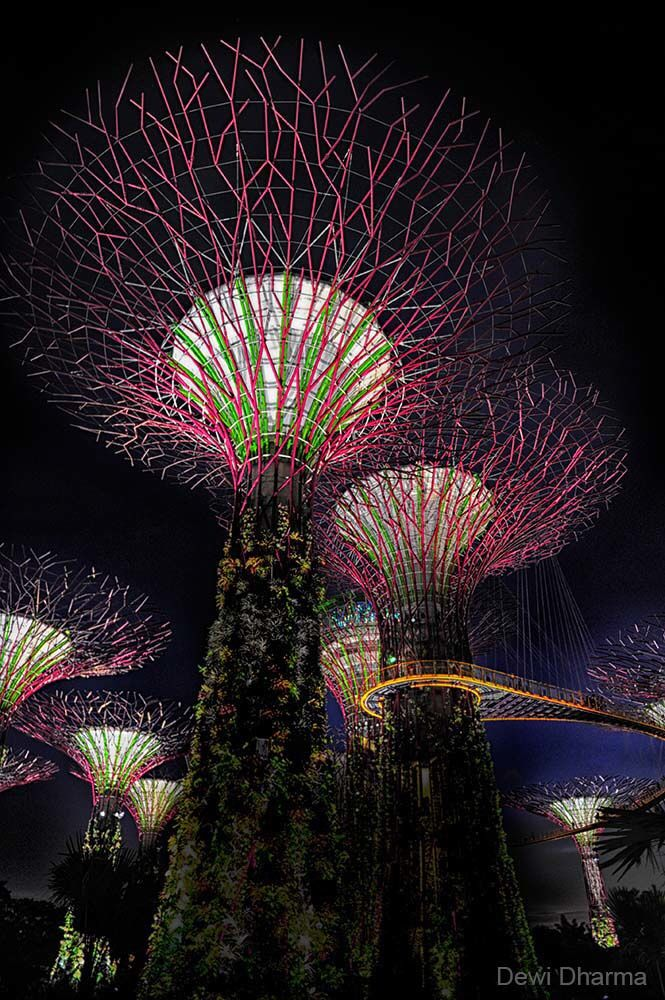 Gardens By The Bay , Singapore My Travel Photos Pinterest