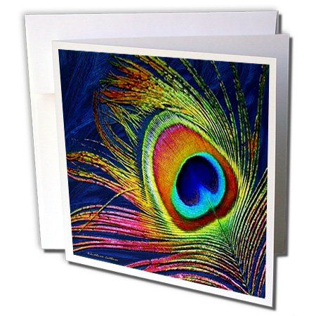 Lee Hiller Designs General Themes - Peacock Feather Print - Greeting Cards-12 Greeting Cards with envelopes  by Lee Hiller #Photography and Designs