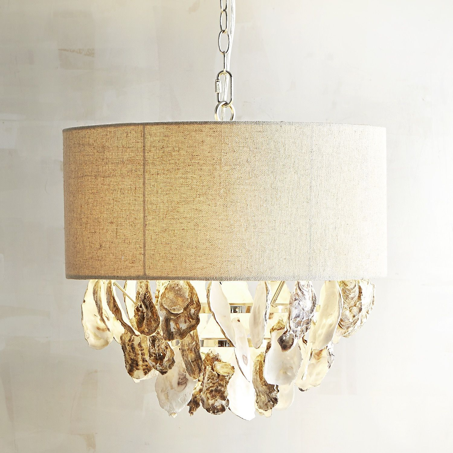 Oyster shell pendant light natural oyster shells pendant lighting oyster shell pendant light aloadofball Image collections