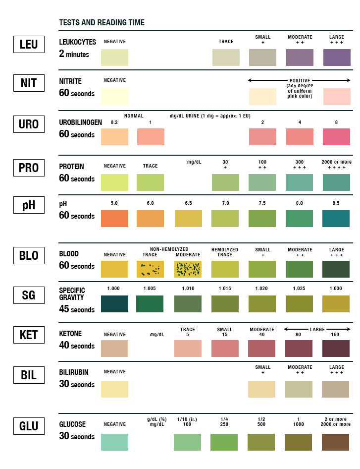 Urinalysis Test Strip Color Chart Learnrallax Health