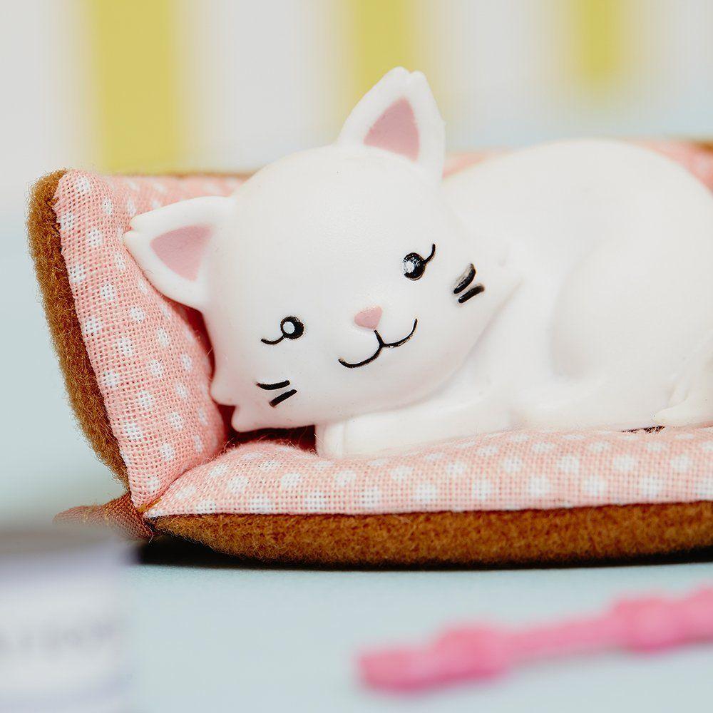 Pandora, la chat Persan