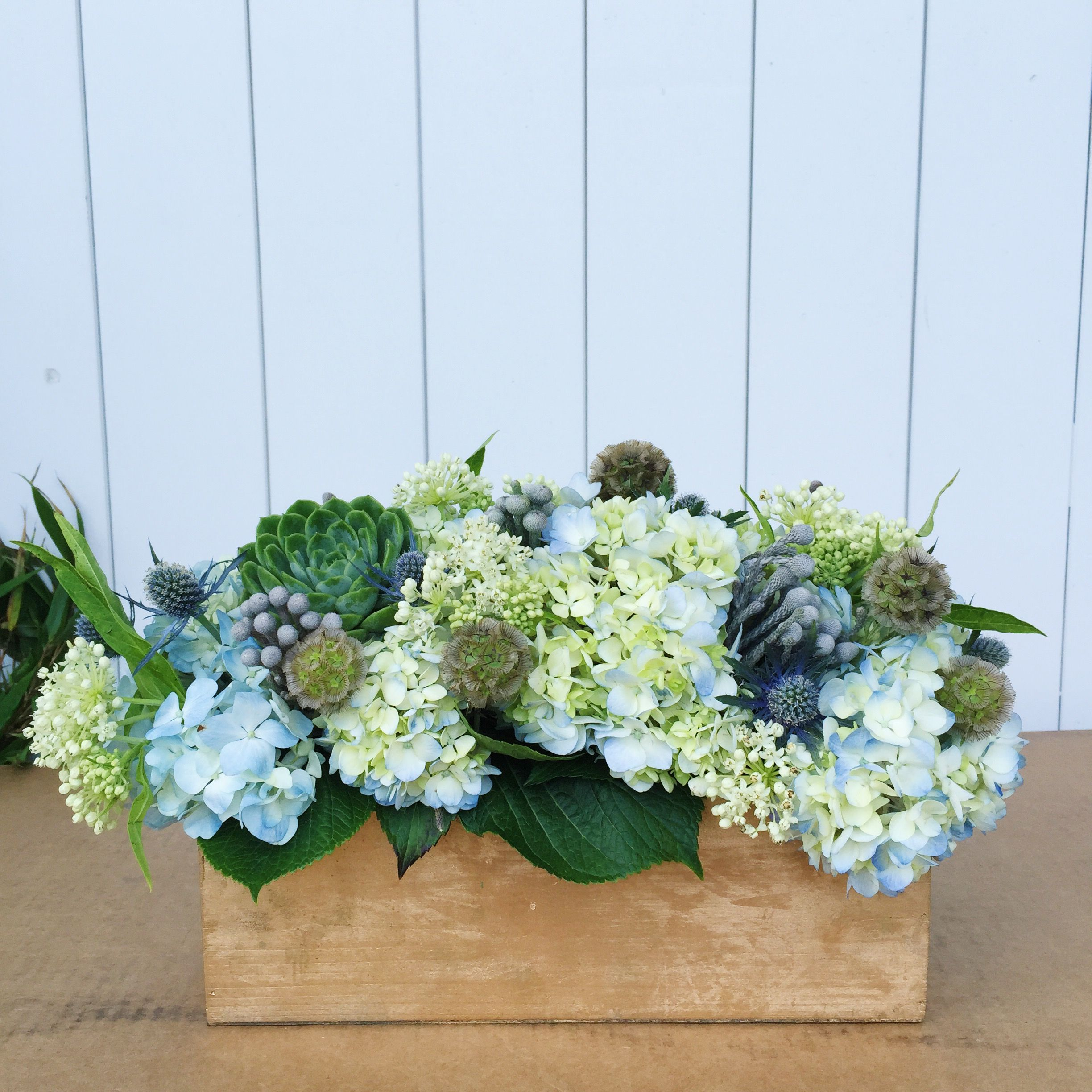 Nantucket Blues Hydrangea Succulent And Thistle Arrangement In A Gold Wooden Box Hydrangea Arrangements Wooden Box Centerpiece Blue Hydrangea Centerpieces
