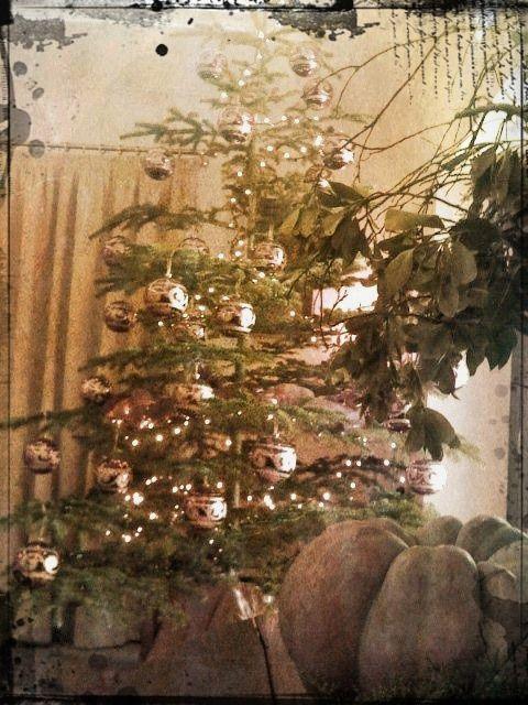 Albero di Natale / Christmas Tree
