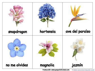 CUADERNO DE NATURALEZA. Reto 3 Primavera para niños | Ecología ...