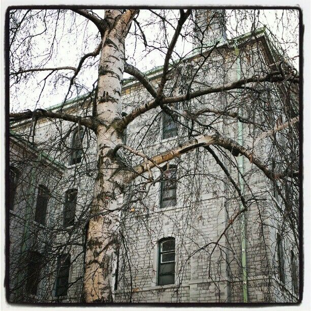 Don't Weep For Me ... Abandoned Rockwood Insane Asylum In