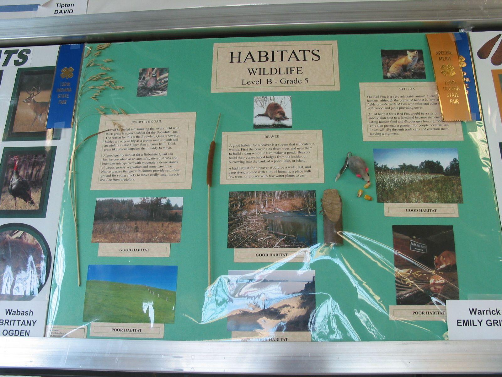 4 H Wildlife Project Habitat Posters