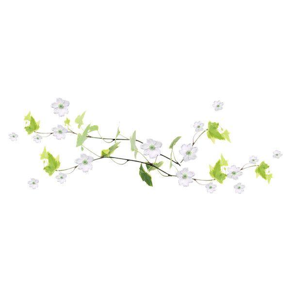 Ivy Vine White Flowers Png Ivy Vine White Flowers Flowers