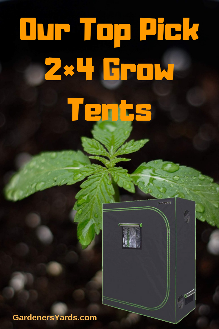 Best 2 4 Grow Tent Ultimate Reviews And Buying Guide Grow Tent Growing Tent