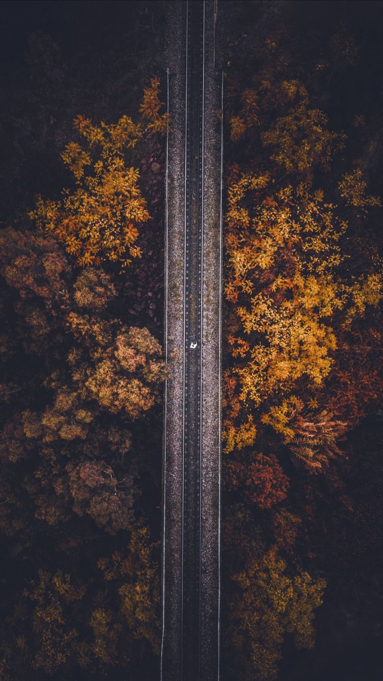 Railroad Autumn Trees Aerial View 750x1334 Wallpaper Autumn Photography Lightroom Presets Wallpaper