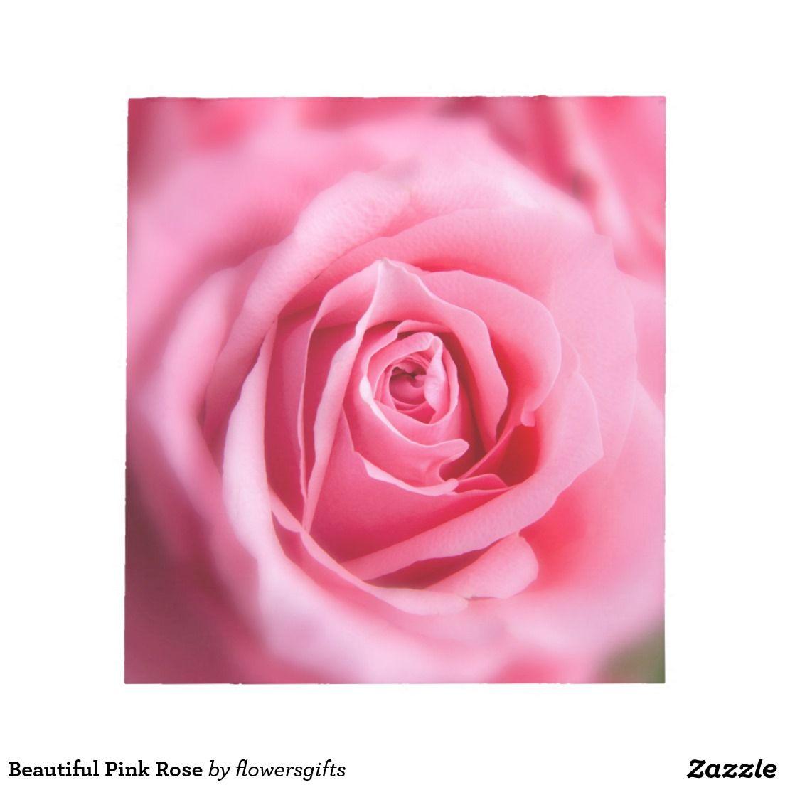 Beautiful Pink Rose Notepad Pink Beautiful And Pink Roses