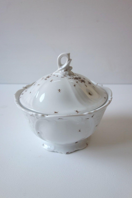 sugar bowl \