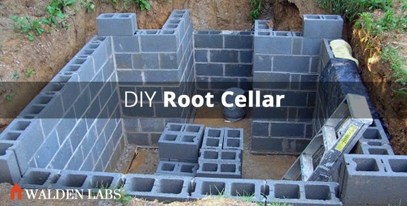 How To Build A Root Cellar In 7 Steps Designfarm Root