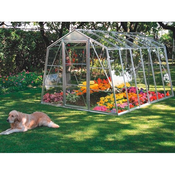 Szklarnia Ogrodowa Perfekt 240 Cm X 318 Cm X 185 Cm W Marketach Obi Greenhouse Pergola Garden