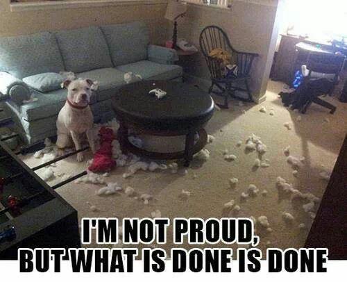 Not Proud but....