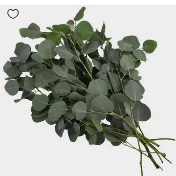 Where To Buy Greenery In Bulk For Weddings Cheap Emmaline Bride In 2020 Silver Dollar Eucalyptus Wholesale Flowers Blue Hydrangea Flowers