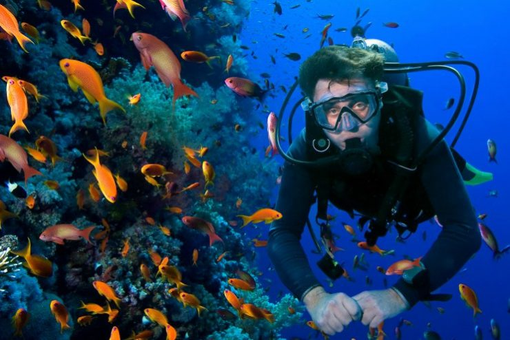 A Beginner's Guide To The Best Places For Scuba Diving In