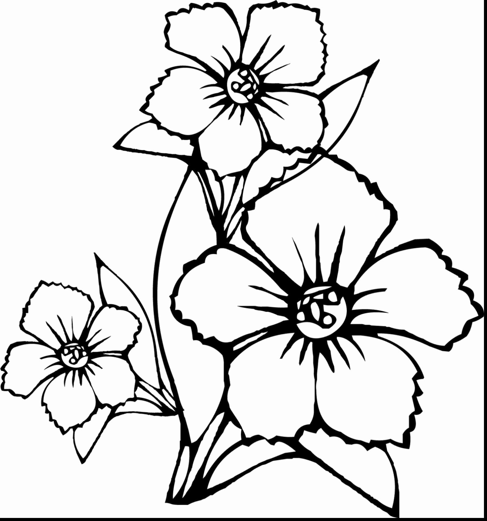 State Flower Coloring Pages New Coloring Pages Birds And Flowers