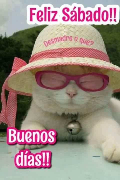 Pin De Astrid Lopez En Buenos Dias Y Dulces Suenos Con
