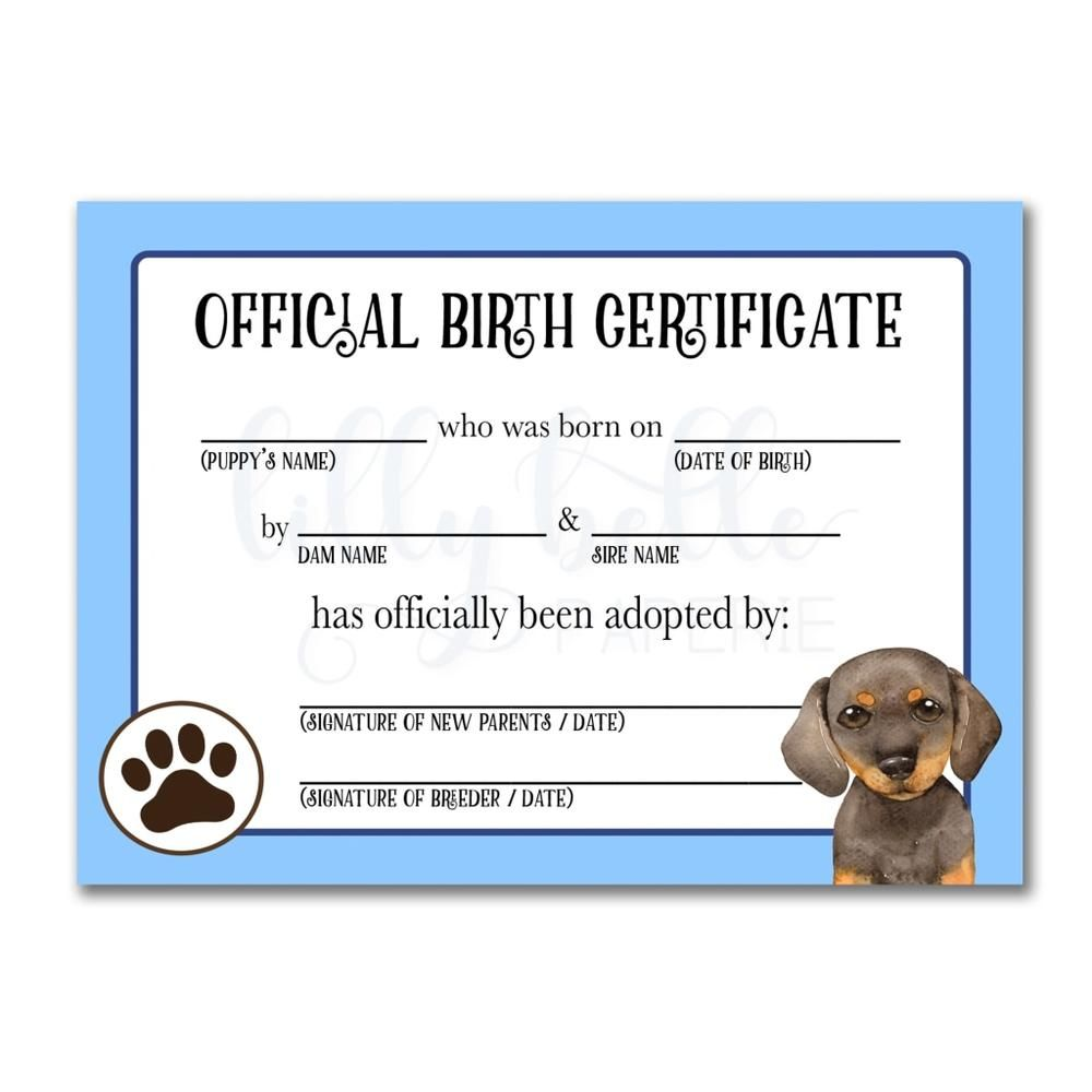 How To Get A Dog Birth Certificate Hutomo