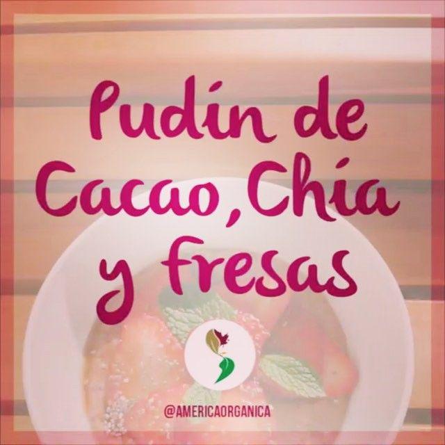 Pudín de Cacao, Chía y Fresas! Fácil, divertido, sano y nutricional postre que puedes variar con tus frutas preferidas, usar la base libre de lactosa para hacerlo aún más beneficioso y delicioso sabor a chocolate! #Cacao #Chia #ChiAmor #SinLactosa #Pudin #Postre #Merienda #Saludable #Organico #Agave #JarabedeAgave #Receta #OrganicRecipe #AmericaOrganica #delatierraconamor