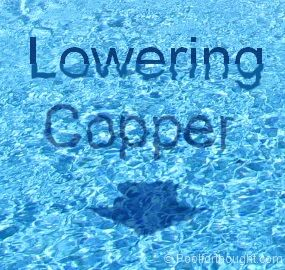 This Article Explains Why Lowering Swimming Pool Copper Is