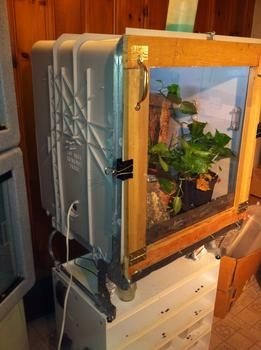 Recycle Project Dishwasher Becomes Terrarium Milford Ma The