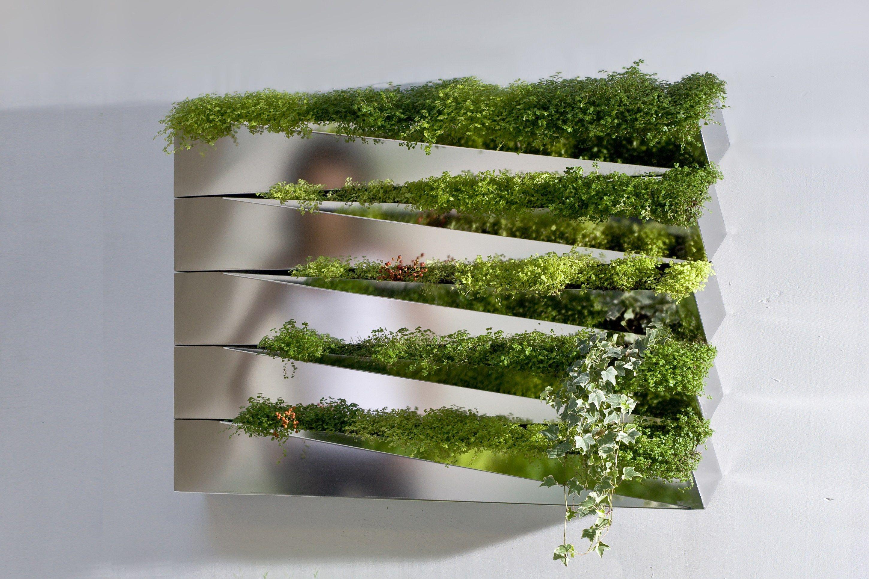 Miroir en herbe