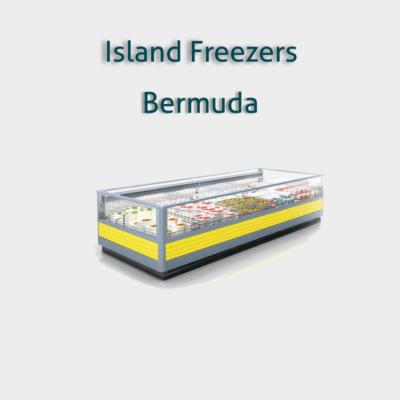 فريزرات عرض أفقية ثلاجات عرض أفقي لحفظ وعرض الآيس كريم والمنتجات المجمدة تصميم مريح وسهل العملاء يوفر الحد الأقصى من Display Refrigerator Supermarket Freezer
