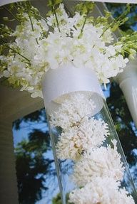 Great for beachsea themed wedding wedding pinterest themed great for beachsea themed wedding junglespirit Gallery