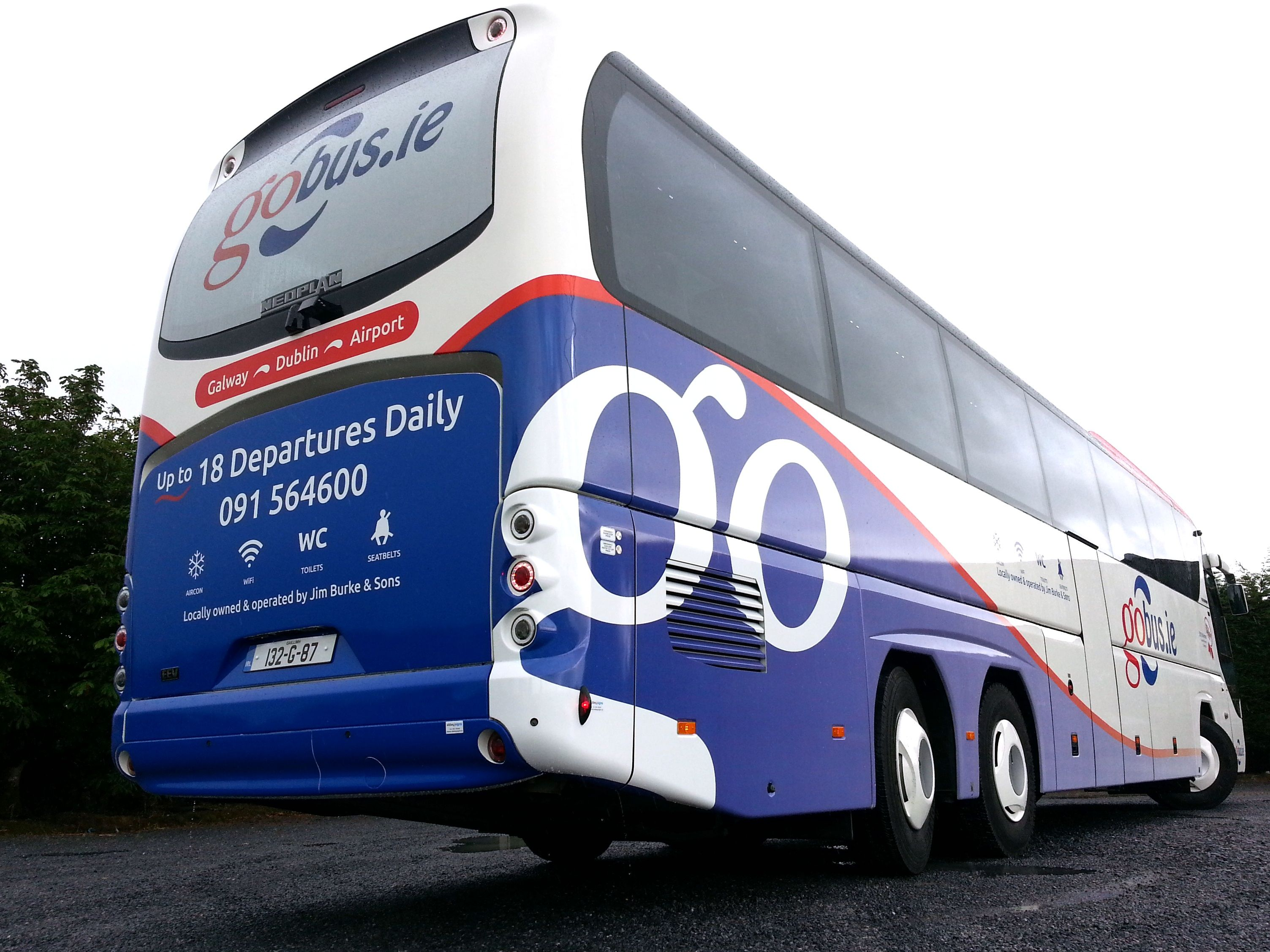Rear Livery Fleet, Vehicles, Bus