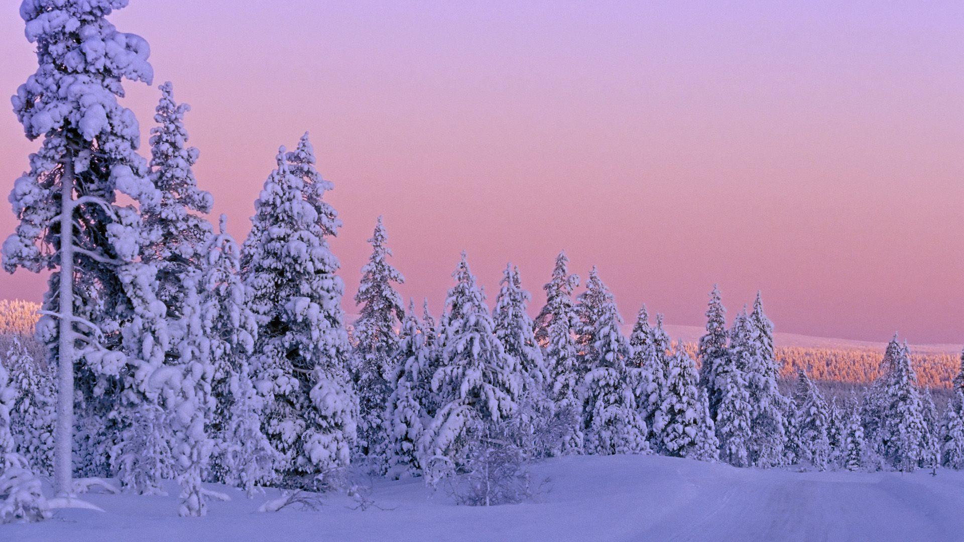 Winter Sunset Winter Snow Pictures Beautiful Winter Scenes Winter Wallpaper