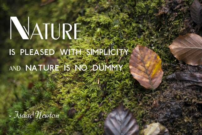 Famoso 25 quotes that will rekindle your connection to nature | Wise  FY91