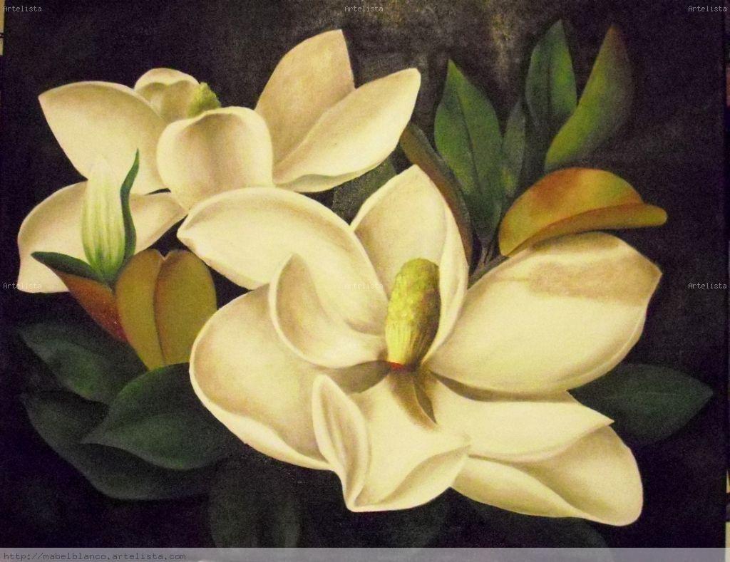 Resultat d\'imatges de flores magnolias fotos | mis pinturas de ...
