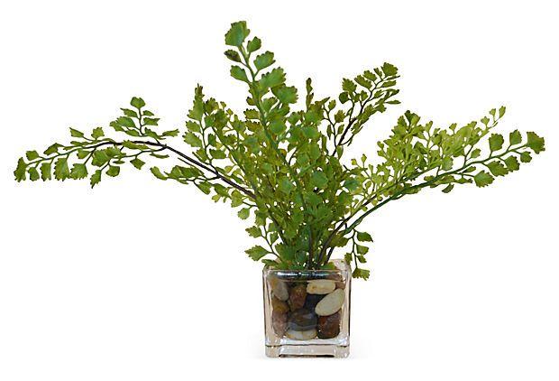 """13"""" Maidenhair Fern in Cube Vase, Faux on OneKingsLane.com"""