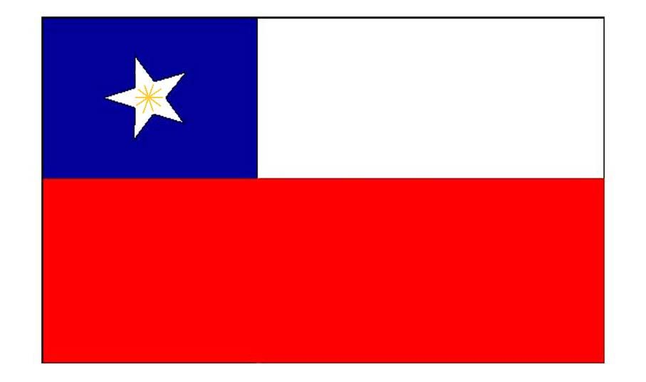 Catalogo Patrimonial Los Verdaderos Simbolos Patrios De Chile