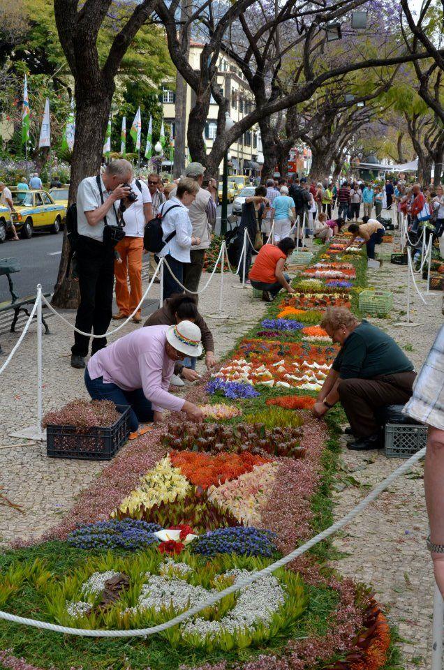 Festa da Flor / Flower Festival 2012, in Madeira, Portugal